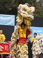 Lion dancers performing at 2008 SFIDBF 4.JPG