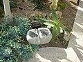 Lithops sculpture.jpg