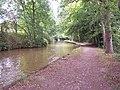Llangollen Canal near Blake Mere - geograph.org.uk - 74210.jpg