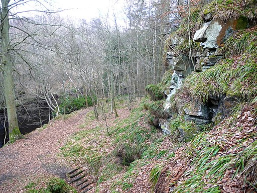 Location of Hartburn Grotto - geograph.org.uk - 1752983