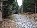 Logging track - geograph.org.uk - 354543.jpg