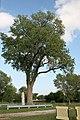 Lone Tree Historical Marker 03.jpg