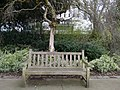 Long shot of the bench (OpenBenches 5520-1).jpg