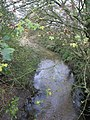 Looking along the Ditch - geograph.org.uk - 1582152.jpg