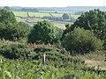 Lovely Countryside - geograph.org.uk - 56578.jpg