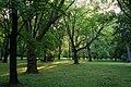 Lučenec park - panoramio.jpg