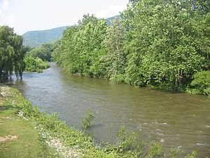 Lycoming Creek - Lycoming Creek at Trout Run in Lycoming County, Pennsylvania