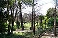 MADRID A.V.U. JARDIN DEL CAMPO DEL MORO - panoramio - Concepcion AMAT ORTA… (7).jpg