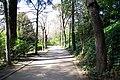 MADRID A.V.U. JARDIN DEL CAMPO DEL MORO - panoramio - Concepcion AMAT ORTA… (8).jpg