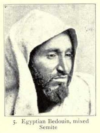 Arabid race - Egyptian Bedouin man of mixed Arabid-Hamitic type.