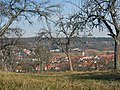 Managed grassland with fruit trees, Streuobstwiese bei Leonberg - panoramio.jpg