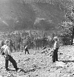 Mann Gulch fire - Wikipedia