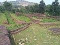 Mansar Archeological Site in Mansar, Maharashtra (6).jpg