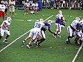 Mario Williams Bills TC.jpg