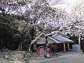 Marunouchi, Matsuyama, Ehime Prefecture 790-0008, Japan - panoramio (27).jpg