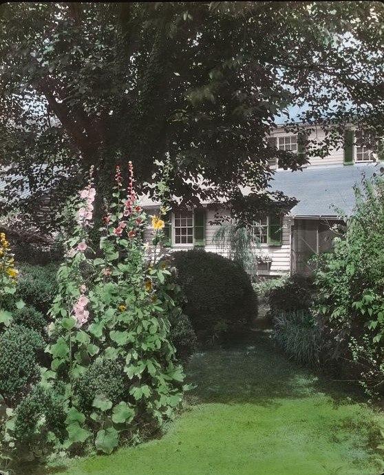 Mary Ball Washington house, 1200 Charles Street, Fredericksburg, Stafford County, Virginia. Pathway
