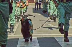 Spanish Legion - Wikipedia