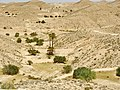 Matmata - panoramio (7).jpg