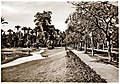 May 1942 - Avenue De Lesseps in magnificent French Gardens, Ismailia, Egypt - real photo card (circa 1930s) (37395889025).jpg