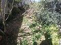 Mdina, Malta - panoramio (142).jpg