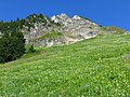 Meadow at North Cascades National Park in Washington 1.jpg