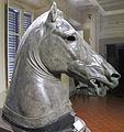 Medici-Riccardi horse 01.JPG