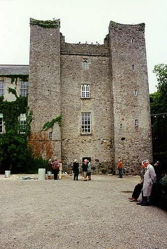 Dardistown Castle - Medieval tower of castle