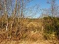 Meenagrauv Townland - geograph.org.uk - 1749318.jpg
