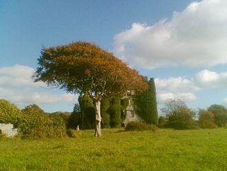 Castlegar, County Galway - Menlo Castle