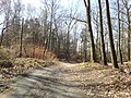 Mikolow, Poland - panoramio (174).jpg