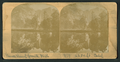Mirror view of Yosemite Falls, 2634 ft. Calif, from Robert N. Dennis collection of stereoscopic views.png