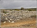 Mocira kod Beleja - panoramio (2).jpg