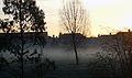 Morning Mist (2250608634).jpg