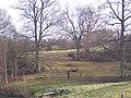 Motocross Riders preparing to go into Furzefield Wood - geograph.org.uk - 1690931.jpg