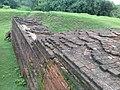 Mound known as Bahanpukur Mound or Fort (Ballal dibi) 20180728 111132.jpg