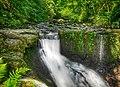 Murg (Hochrhein) kleiner Wasserfall der Hauensteiner Murg.jpg