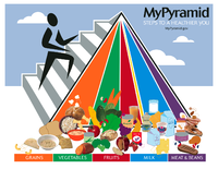 The updated USDA food pyramid, published in 2005...