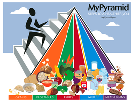 On health: The updated USDA food pyramid, published in 2005, is a general nutrition guide for recommended food consumption.