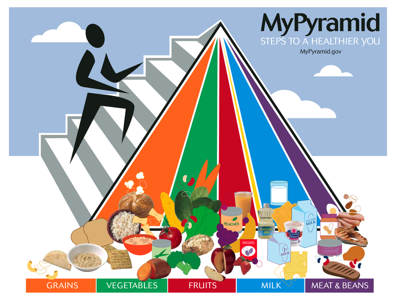 The current  Food Guide Pyramid.