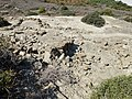 Myrtos Pyrgos 20.jpg