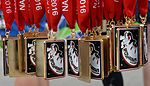 NASA Langley hosts Moonwalk and Run 5K 160604-F-JC454-409.jpg