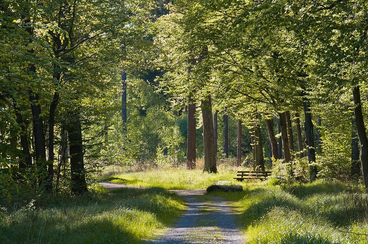 Rotwildpark bei stuttgart wikipedia for Habitat stuttgart