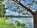 Nature lake perak.jpg