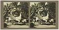 Ned. Indie, Borneo, praalwagen in de vorm van vogel, geflankeerd door enkele mannen.jpeg