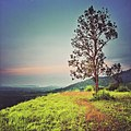 Ngao, Mueang Ranong District, Ranong 85000, Thailand - panoramio (2).jpg