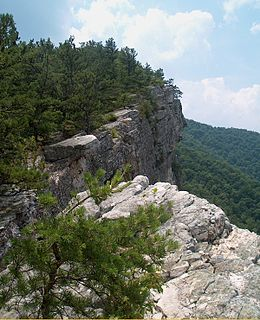 North Fork Mountain mountain in United States of America
