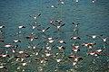 North Greece Aerial Photo by www.artware.gr 26.jpg