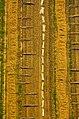 North Greece Aerial Photo by www.artware.gr 3.jpg
