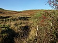 November Hills - geograph.org.uk - 618470.jpg