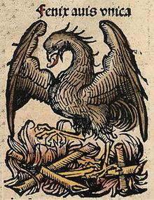 Fénix Wikipedia La Enciclopedia Libre